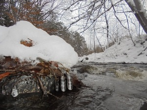 icicles by the river